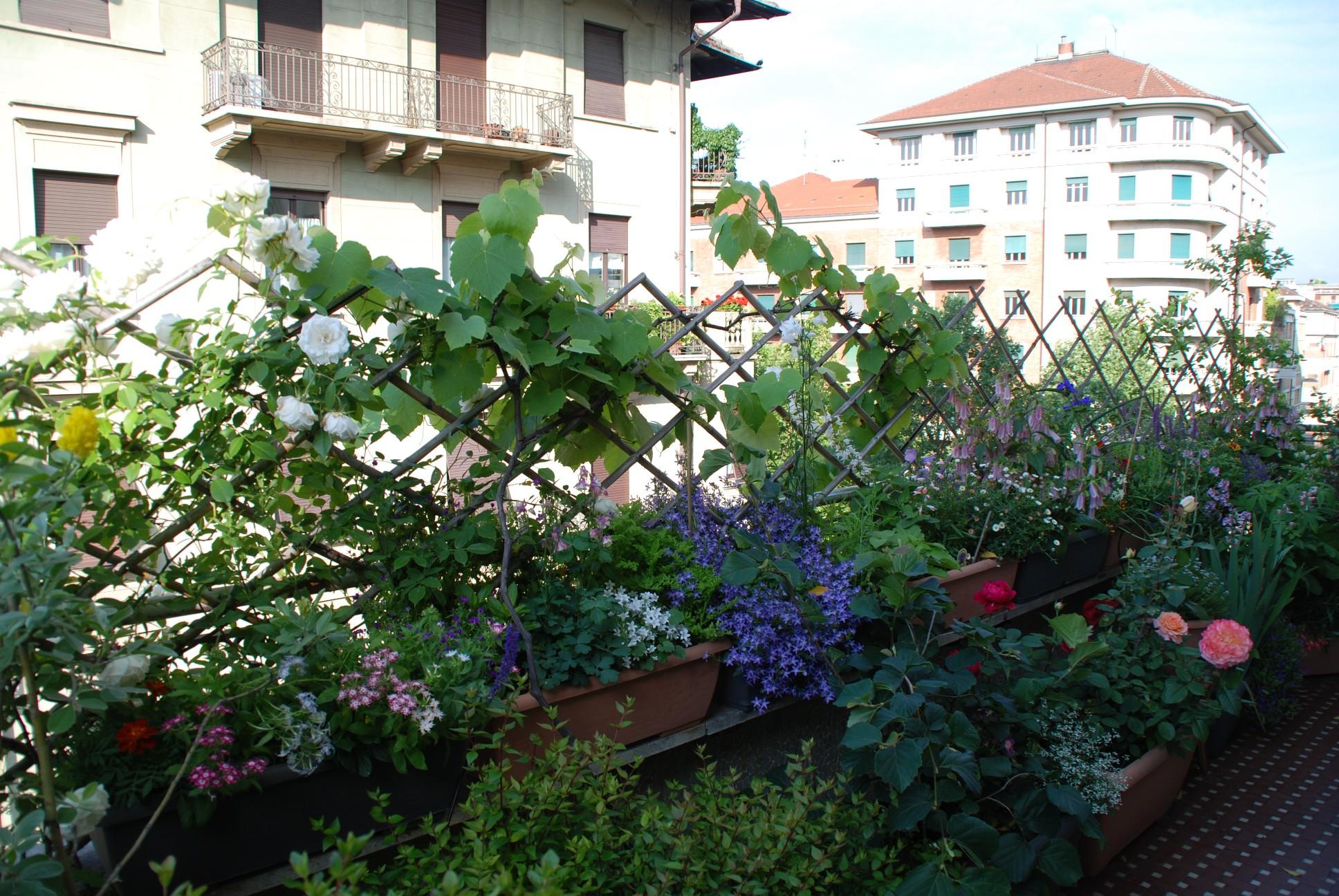 Come sistemare la terrazza creare un piccolo 39 paradiso - Divanetto da balcone ...