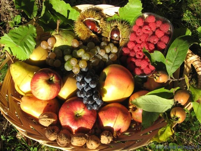 Carrello della spesa frutta e verdura di ottobre female - Immagine di frutta e verdura ...