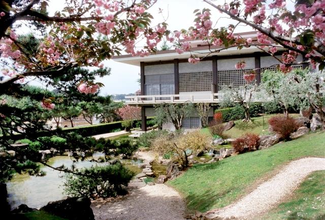 Giardino dell 39 istituto giapponese visite guidate gratuite for Laghetto giapponese