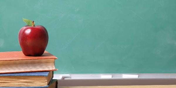 Libri da leggere per l'inizio della scuola, i titoli più adatti alle varie età